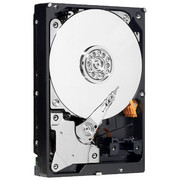 Western Digital RE4-GP